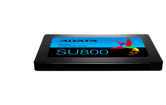 SSD Adata Ultimate SU800 1TB
