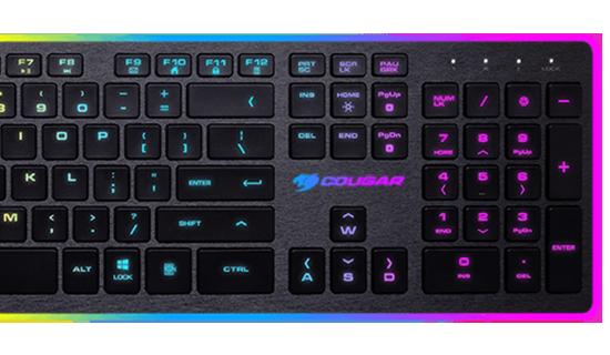 cougar-37vanxnmb-0004-03
